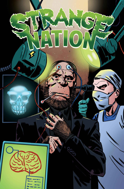 Strange Nation cover